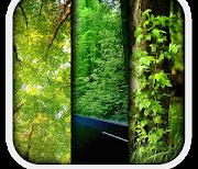 Природа logo