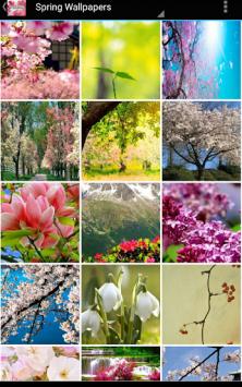 Здравствуй Весна скриншот 1