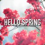 Здравствуй Весна Wallpaper