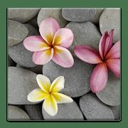 Камни в Воде logo