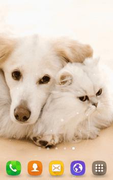 Кошки и собаки скриншот 4