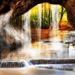 Лесной Водопад Live Wallpaper