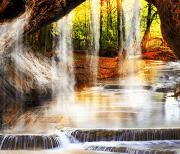 Лесной Водопад logo