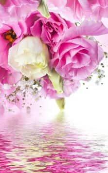 Розовые розы скриншот 3