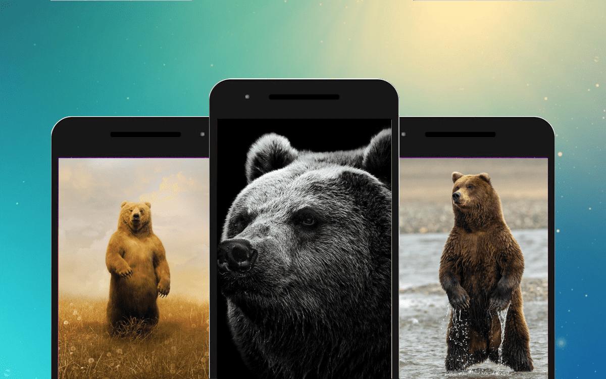 Медведь скриншот 1