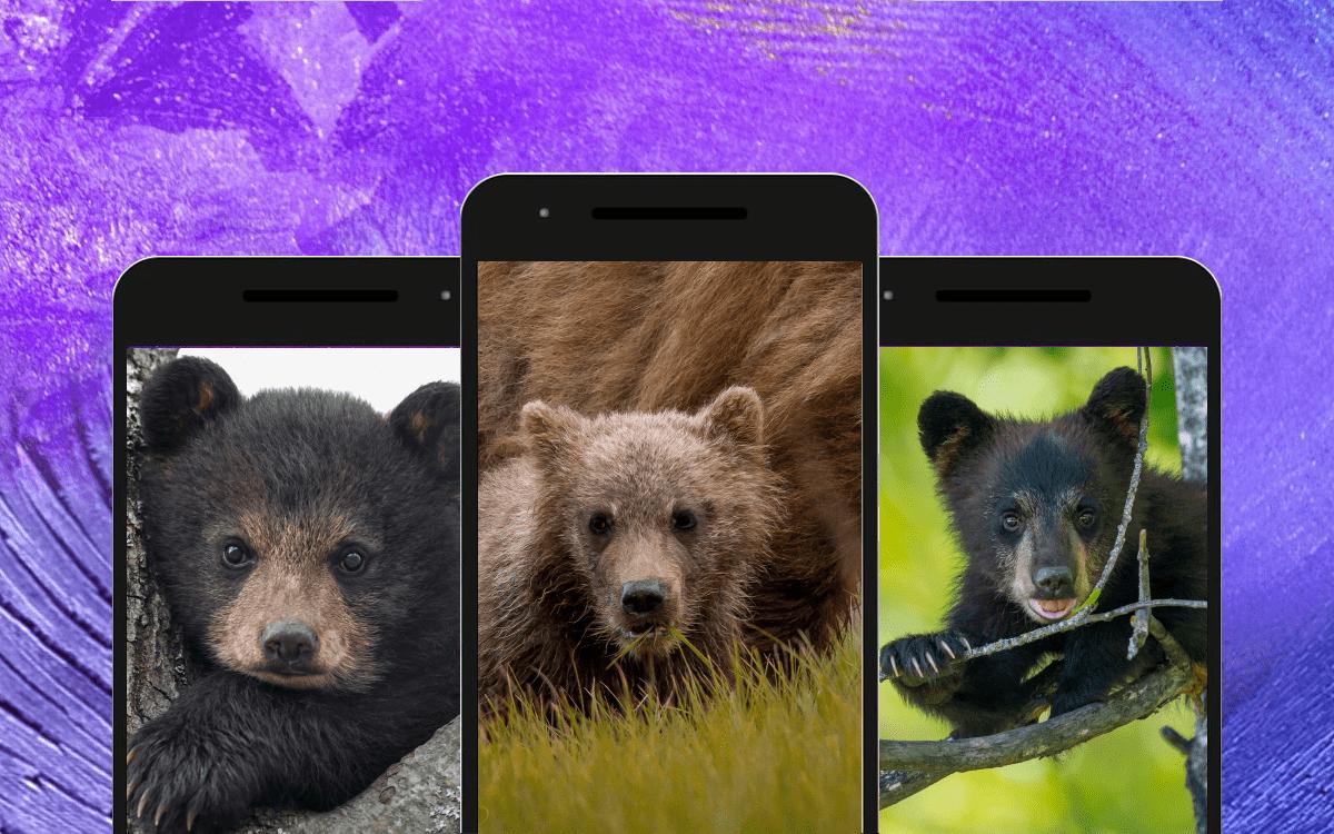 Медведь скриншот 3