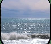 Океан logo