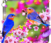 Красивые Птички logo