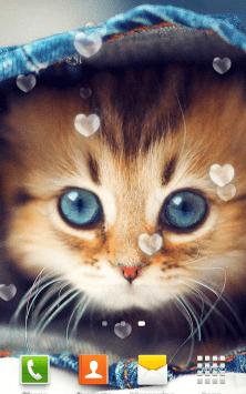 Милые Котята HD скриншот 1