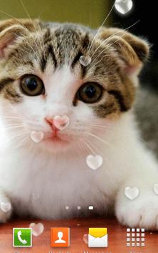 Милые Котята HD скриншот 3