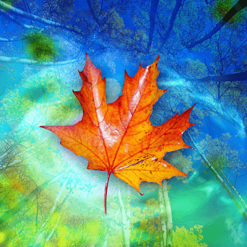Осенние Листья logo