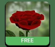 Роза 3D logo