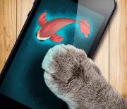 Рыбка для кошки игра logo