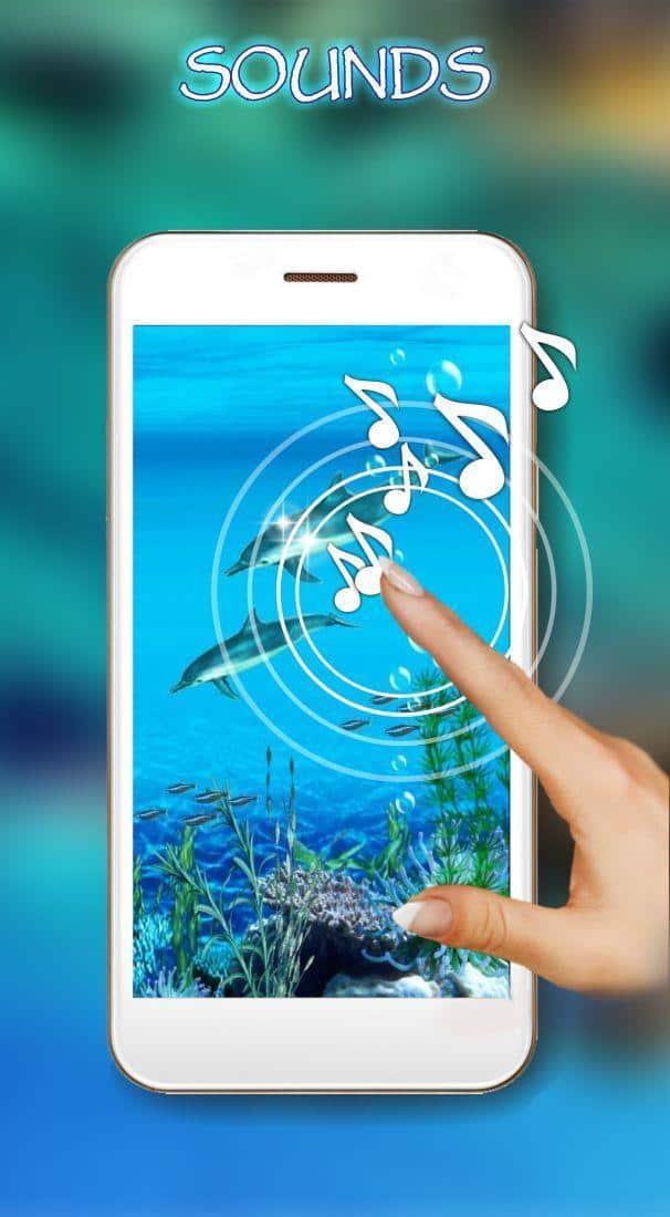 Звуки дельфинов скриншот 2