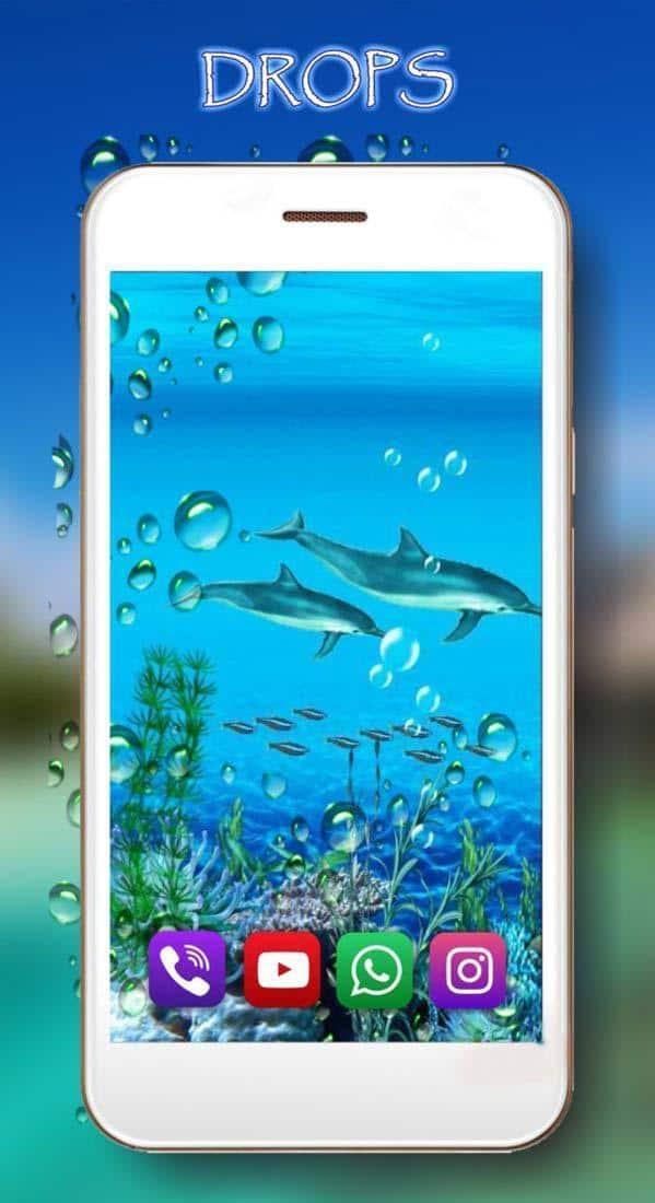 Звуки дельфинов скриншот 3