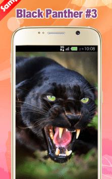 Черная пантера скриншот 3