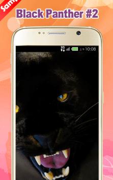 Черная пантера скриншот 4