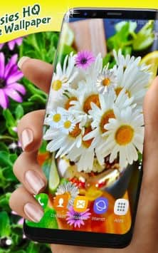 Live Wallpaper 3D Daisy Spring Field Themes скриншот 3