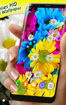 Live Wallpaper 3D Daisy Spring Field Themes скриншот 4