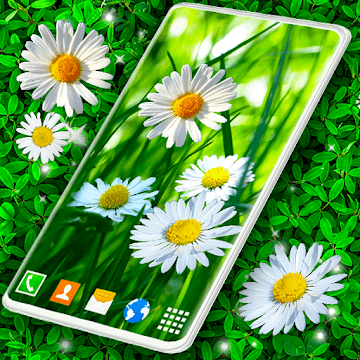 Live Wallpaper 3D Daisy Spring Field Themes logo