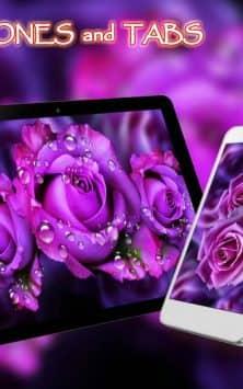 Розы Пурпурные скриншот 1