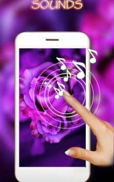 Розы Пурпурные скриншот 2