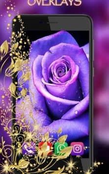 Розы Пурпурные скриншот 3