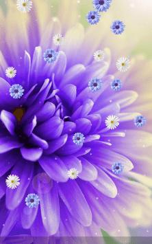 Цветы скриншот 2