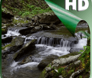 Горная река видео logo