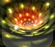 Королевские Цветы logo