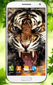 Тигр скриншот 1