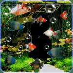 Aquarium Live Wallpaper Free