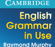 English Grammar in Use logo