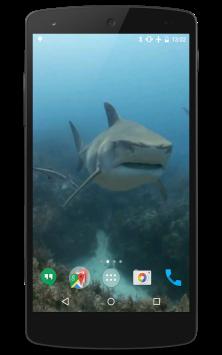 Акулы видео скриншот 1