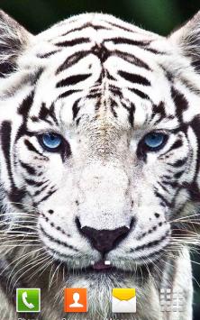 Белый Тигр скриншот 1