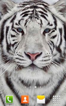 Белый Тигр скриншот 2