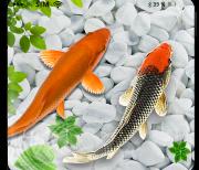 KOI рыбы logo