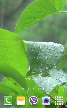 Ливень Видео скриншот 2