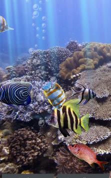 Настоящий аквариум – HD скриншот 3