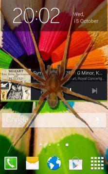 Паук в телефоне Весёлая Шутка скриншот 1