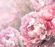 Винтаж розы logo