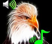 Звуки животных мелодии и обои logo