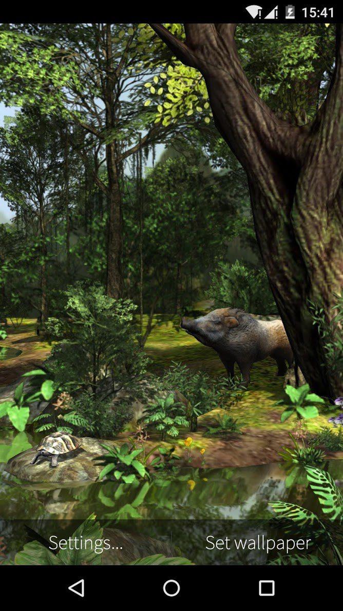 3D Rainforest скриншот 2