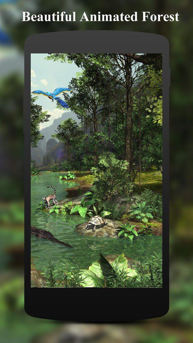 3D Rainforest скриншот 3