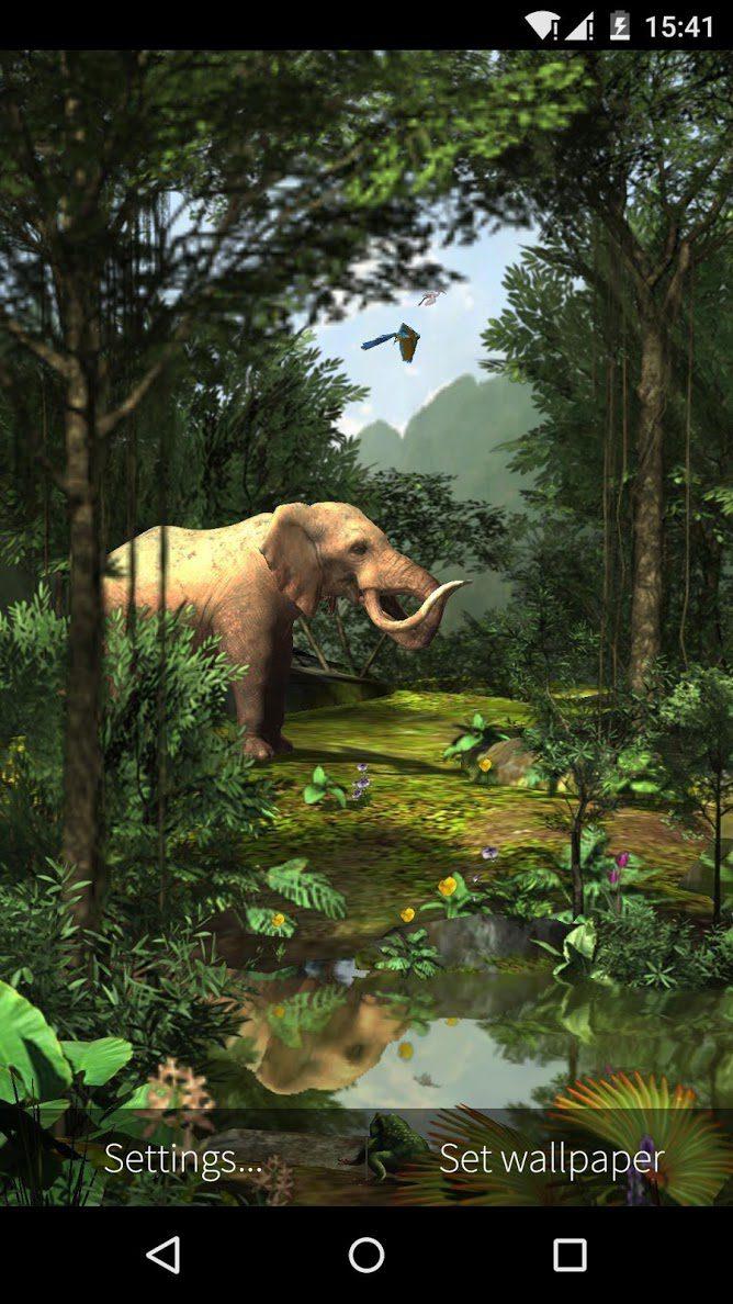 3D Rainforest скриншот 4
