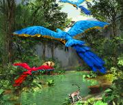 3D Rainforest logo