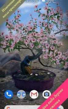 Бонсай 3D скриншот 3
