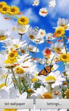 Цветок скриншот 1