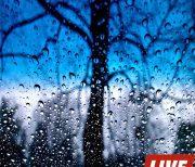 Дождь logo