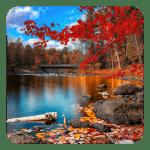 Осень акварель